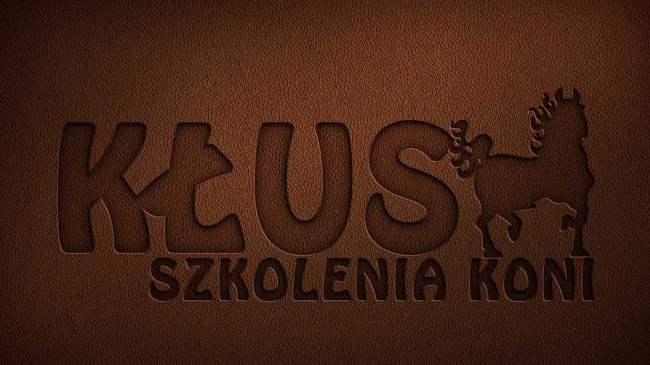 KRAK-GRAF portfolio KŁUS logo 4