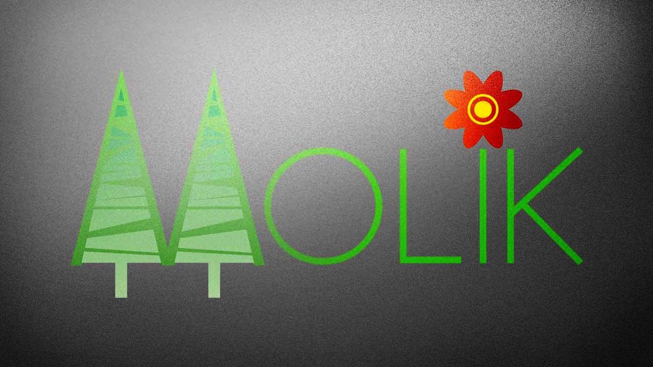 KRAK-GRAF portfolio KRZEWY MOLIK logo 3