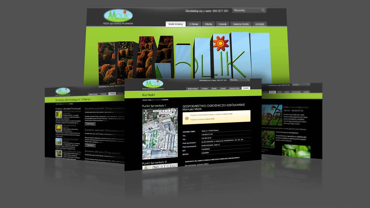 KRAK-GRAF portfolio KRZEWY MOLIK strona www 2