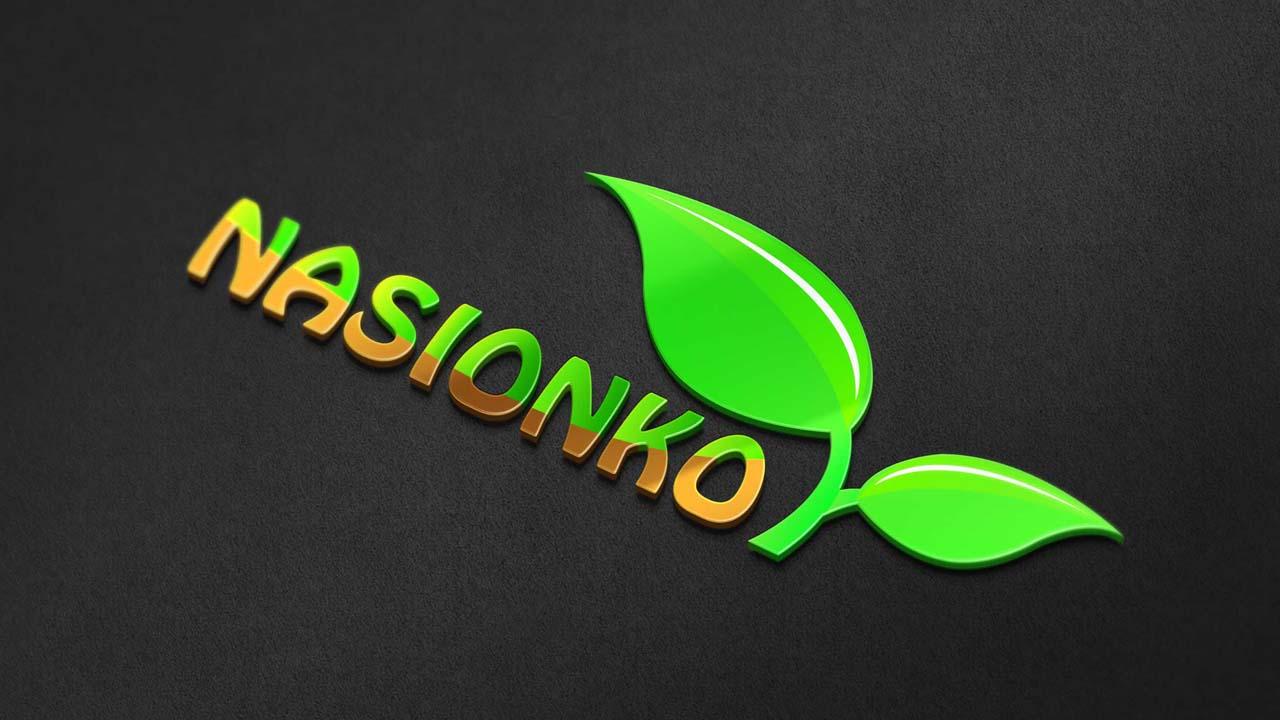 KRAK-GRAF portfolio NASIONKO logo 3