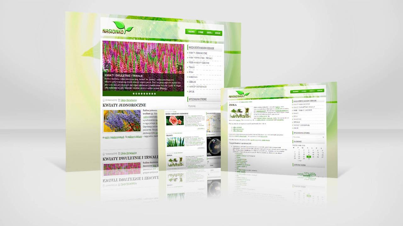 KRAK-GRAF portfolio NASIONKO strona www 3
